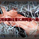 奴隷拷問ショー【II】